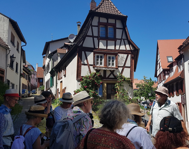 Wilde Pflanzen in der Altstadt