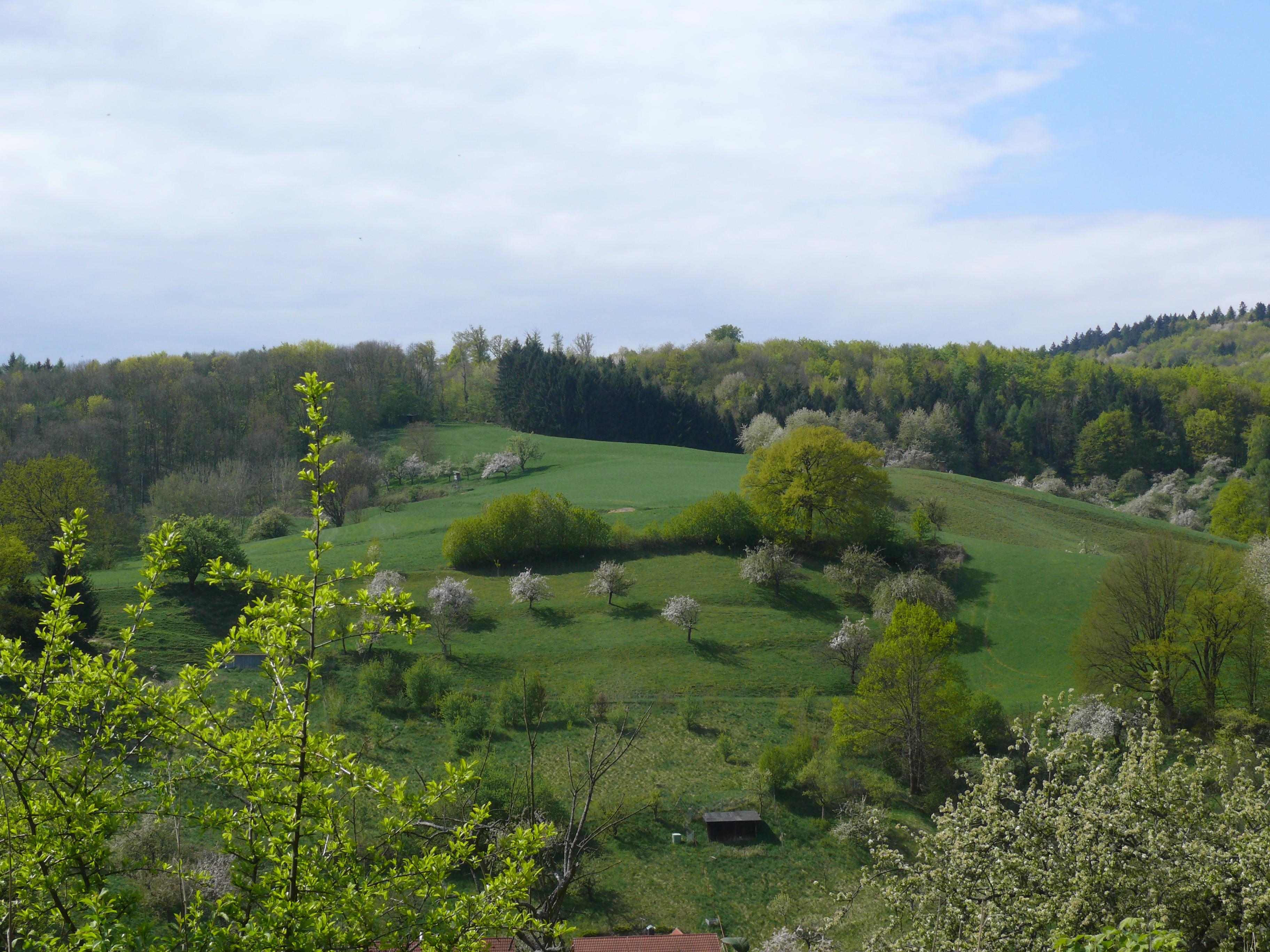 ABGESAGT: Naturspaziergang Nieder-Liebersbach zur Frischen Quelle