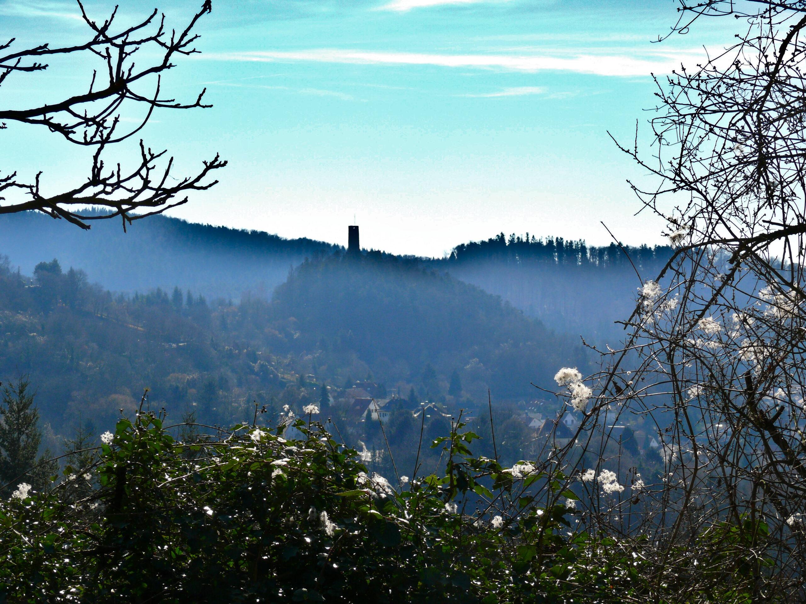 ABGESAGT: Naturspaziergang Hirschkopf