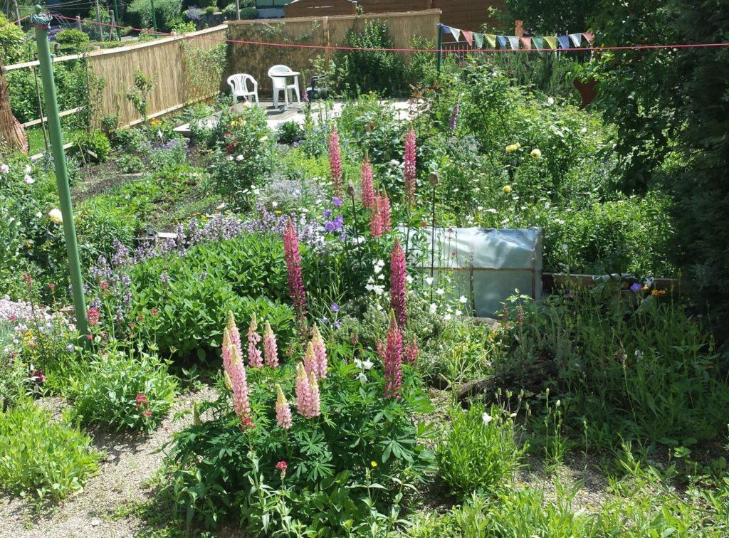 naturnaher Garten in Weinheim